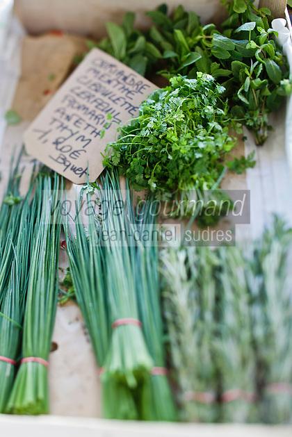 Europe/France/Aquitaine/40/Landes/Dax:Fines Herbes,  Herbes aromatiques sur le marché