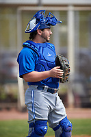 Toronto Blue Jays catcher Ryan Gold (20) during practice before an exhibition game against the Canada Junior National Team on March 8, 2020 at Baseball City in St. Petersburg, Florida.  (Mike Janes/Four Seam Images)