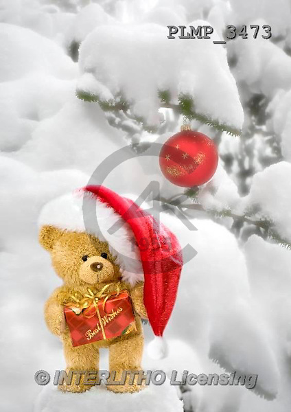 Marek, CHRISTMAS ANIMALS, WEIHNACHTEN TIERE, NAVIDAD ANIMALES, teddies, photos+++++,PLMP3473,#Xa# in snow,outsite,