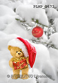 Marek, CHRISTMAS ANIMALS, WEIHNACHTEN TIERE, NAVIDAD ANIMALES, teddies, photos+++++,PLMP3473,#Xa# in snow,outsite,