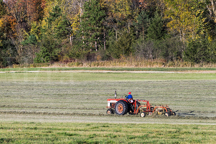Farmer on tractor making hay, Weybridge, Vermont, USA.