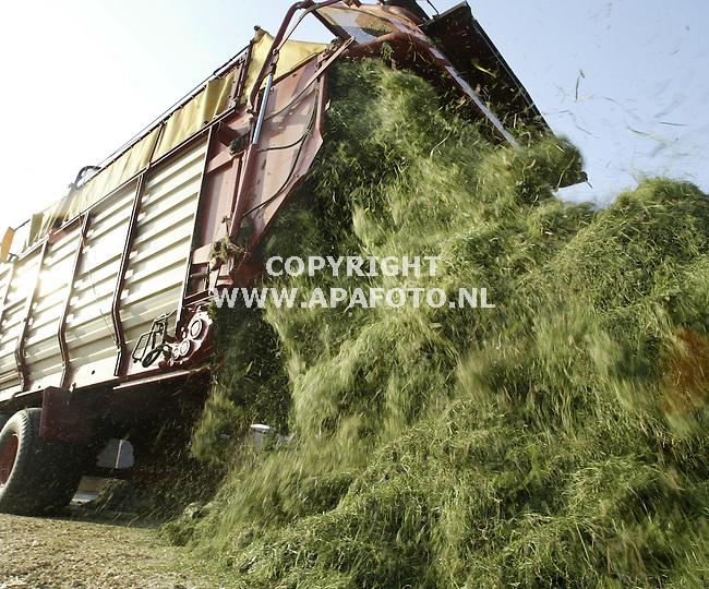 velp 061005 Boer oberink haalt de 7e snede van zijn grasland voor de kuil.<br />Foto frans Ypma APA-foto