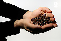 Man holding coffee beans, close-up of hands (Licence this image exclusively with Getty: http://www.gettyimages.com/detail/sb10068346cf-001 )