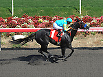 October 3, 2010.Mother ruth riden by Martin Garcia wins The Louis R. rowan Stakes at Hollywood Park, Inglewood, CA