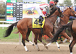 Cash for Clunkers, ridden by Alan Garcia, in the Beldame Invitational Stakes (GI) at Belmont Park in Elmont, New York on September 29, 2012.  (Bob Mayberger/Eclipse Sportswire)
