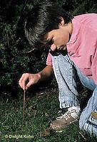 1Y06-002x  Earthworm - nightcrawler - boy collecting worms for bait - Lumbricus terrestris