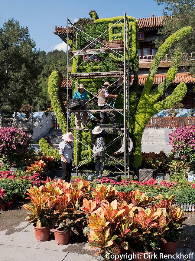 Blumenausstellung auf dem Jingshan-Hügel, Peking, China, Asien<br /> Flower exhibition on Jingshan Hill, Beijing, China, Asia