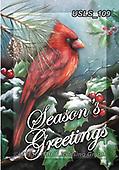 Lori, CHRISTMAS SYMBOLS, WEIHNACHTEN SYMBOLE, NAVIDAD SÍMBOLOS, paintings+++++4-Cardinal_1,USLS109,#xx# ,red robin
