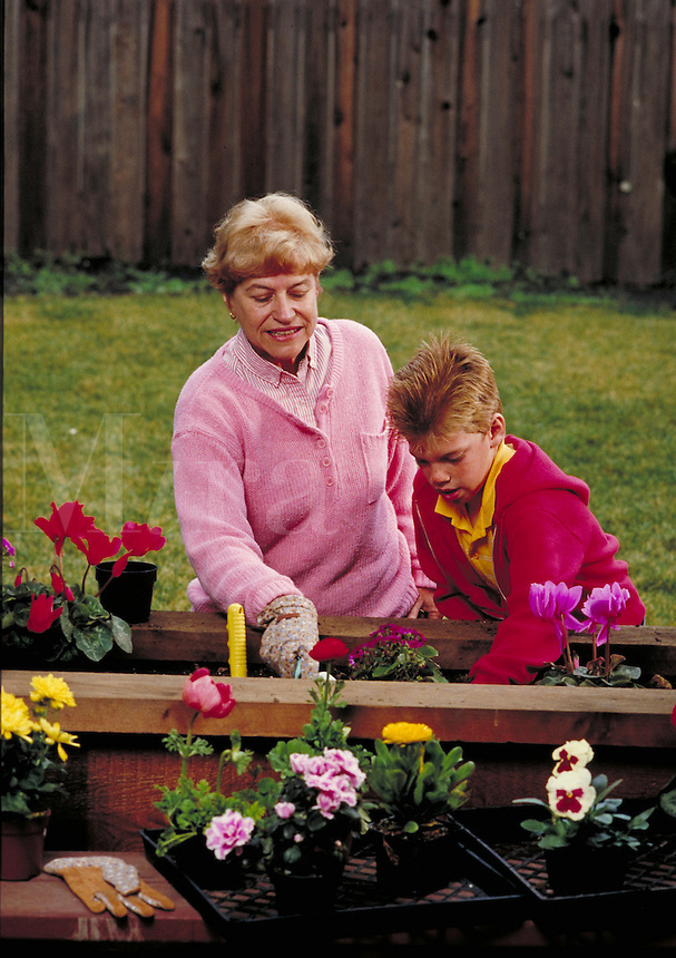 CAUCASIAN GRANDMOTHER TEACHING HER GRANDSON HOW TO PLANT FLOWERS IN THE GARDEN. CAUCASIAN GRANDMOTHER AND GRANDSON. OAKLAND CALIFORNIA USA.