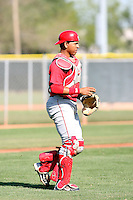 Anel De Los Santos, Los Angeles Angels 2010 minor league spring training..Photo by:  Bill Mitchell/Four Seam Images.