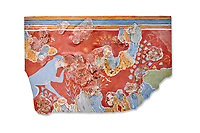 Minoan 'Blue Monkey' wall art fresco from the 'House of Frescoes' Knossos Palace, 1600-1500 BC. Heraklion Archaeological Museum.  White Background.