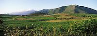 Europe/France/Corse/2B/Haute-Corse/Nebbio/Env. de Murato: Paysage du Nebbio