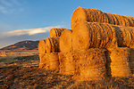 Gallatin County, MT: Evening light on stacked hay bales