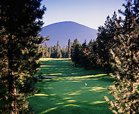 Golfing landscape of the 7th hole on the Glaze Meadow Course. Black Butte, Oregon.