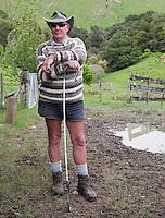 "Sheep Herder (""Musterer"") with Shepherd's Crook, near Masterton, Wairarapa region, north island, New Zealand."