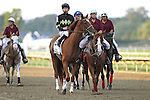 September 19, 2015.  PA Derby post parade: Island Town, Brian Hernandez up.  $1,000,000 Grade II Pennsylvania Derby, one and 1/8th miles for three-year-olds, at  Parx Racing in Bensalem, PA. (Joan Fairman Kanes/ESW/CSM)