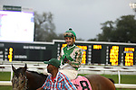 NEW ORLEANS, LA - JANUARY 21:<br />  Guest Suite#8 ridden by Robby Albarado finishes to win the LeComte Stakes at the Fairgrounds Race Course on January 21,2017  in New Orleans, Louisiana. (Photo by Steve Dalmado/Eclipse Sportswire/Getty Images)
