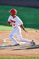Angel Genao (14) of the Orem Owlz at bat against the Grand Junction Rockies in Pioneer League action at Home of the Owlz on July 6, 2016 in Orem, Utah. The Owlz defeated the Rockies 9-1 in Game 1 of the double header.  (Stephen Smith/Four Seam Images)