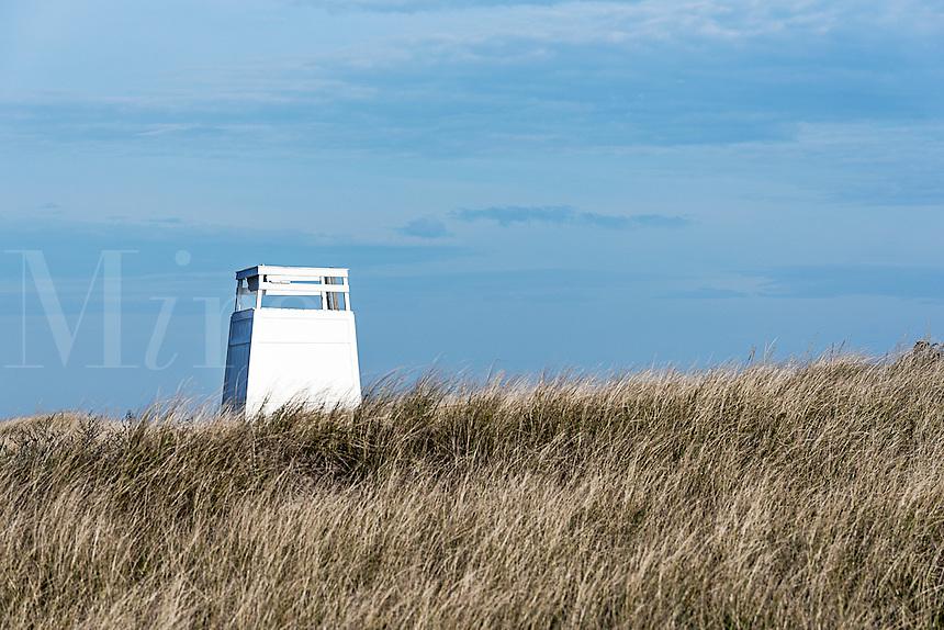 Lifeguard stand at Bend in the Road Beach, Edgartown, Martha's Vineyard, Massachusetts, USA