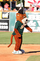 Kane County Cougars mascot during a Midwest League game at Elfstrom Stadium on July 15, 2006 in Geneva, Illinois.  (Mike Janes/Four Seam Images)