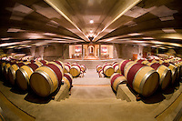 Wines of Chile and Mendoza - TRAVEL