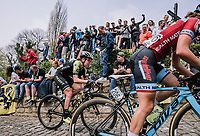 The Peloton at the top of the Muur,  16th Ronde Van Vlaanderen, Jess Allen, Fien Delbaere<br /> <br /> Elite Womans Race (1.WWT)<br /> <br /> One day race from Oudenaarde to Oudenaarde<br /> ©Jojo Harper for Kramon