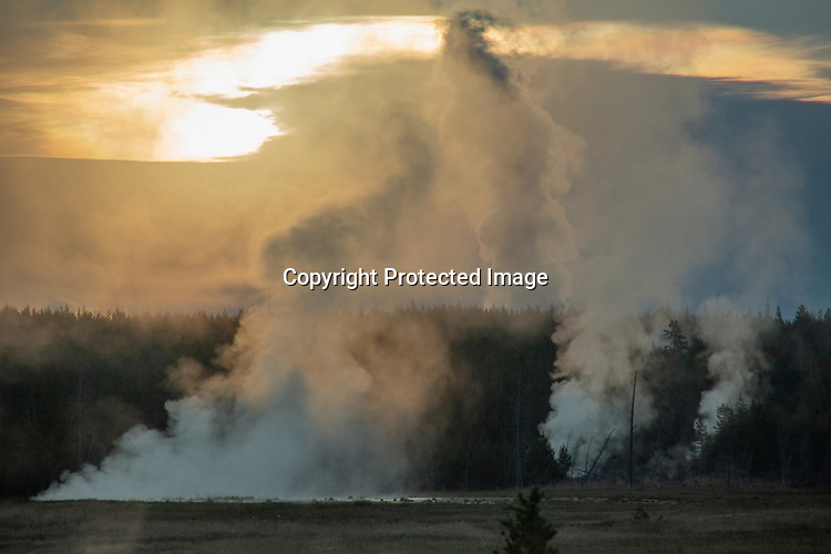 Steam rises in Yellowstone.