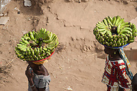 MALI Djenne , women carry banana on the head to sell on the market / MALI Djenne, Frauen tragen Bananen auf dem Kopf zum Markt