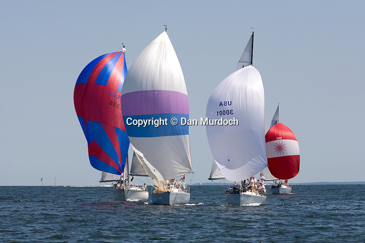 sailboats racing downwind with spinnakers set