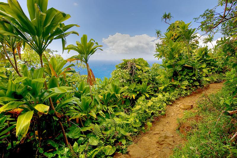 Napali coast trail. Kauai, Hawaii