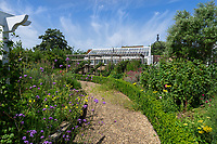 BNPS.co.uk (01202 558833)<br /> Pic: Hamptons/BNPS<br /> <br /> Pictured: The gardens and greenhouse.<br /> <br /> An incredible Arts and Crafts country house with its own vineyard is on the market for offers over £7m.<br /> <br /> The Grade II listed St Joseph's Hall is a striking 111-year-old property that was home to the Bishop of Arundel for 40 years.<br /> <br /> It has a wealth of period features, an indoor swimming pool and seven acres of vineyard with mostly Chardonnay grapes, which the owners sell to a local winery.<br /> <br /> The house in Storrington, West Sussex, has 17 acres of land with beautiful views over the South Downs.