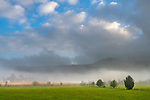 Great Smoky Mountains National Park, Tennessee:<br /> Morning sun and clearing fog in Cades Cove, early spring