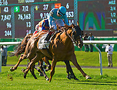 9th New York Stakes - Dacita