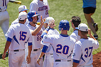Florida Gators outfielder Ryan Larson (66) is greeted by his teammates after scoring against the Virginia Cavaliers in Game 11 of the NCAA College World Series on June 19, 2015 at TD Ameritrade Park in Omaha, Nebraska. The Gators defeated Virginia 10-5. (Andrew Woolley/Four Seam Images)
