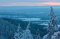 Europe/Finlande/Laponie/Levi/ Paniorama depuis la Montagne de Levi