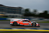 #6 Acura Team Penske Acura DPi, DPi: Juan Pablo Montoya, Dane Cameron