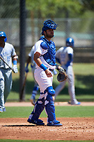 AZL Dodgers Lasorda catcher Steve Berman (67) during a rehab assignment in an Arizona League game against the AZL Royals on July 4, 2019 at Camelback Ranch in Glendale, Arizona. The AZL Royals defeated the AZL Dodgers Lasorda 4-1. (Zachary Lucy/Four Seam Images)