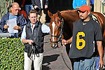 14 February 2010: Much Rejoicing with Elvis Trujillo wins a Maiden Special Weight race at Gulfstream Park in Hallandale Beach, FL..d