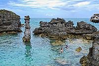 Snorkelers, Bermuda
