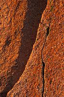 Granite detail, Enchanted Rock State Natural Area, Texas.<br /> <br /> Canon EOS 1, Tokina 100mm macro lens, Fuji Velvia film