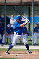 Toronto Blue Jays Hunter Steinmetz (13) at bat during a Florida Instructional League game against the Pittsburgh Pirates on September 20, 2018 at the Englebert Complex in Dunedin, Florida.  (Mike Janes/Four Seam Images)
