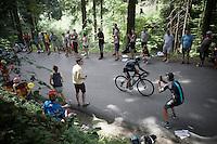Sergio Henao (COL/SKY)<br /> <br /> Stage 18 (ITT) - Sallanches › Megève (17km)<br /> 103rd Tour de France 2016