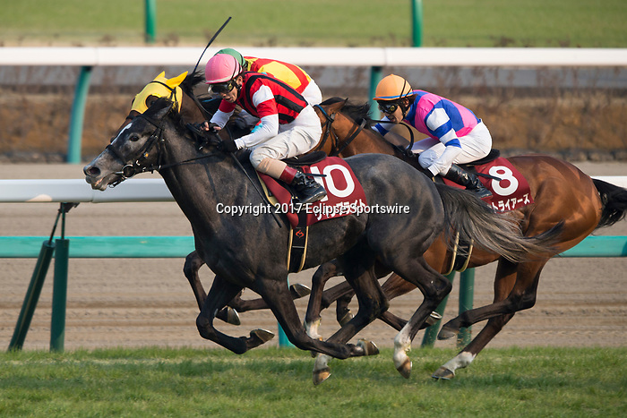 FUNABASHI,JAPAN-MARCH 19: Win Bright #10,ridden by Masami Matsuoka,wins the Spring Stakes at Nakayama Racecourse on March 19,2017 in Funabashi,Chiba,Japan (Photo by Kaz Ishida/Eclipse Sportswire/Getty Images)