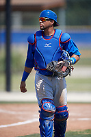 Toronto Blue Jays catcher Michael De La Cruz (29) during a minor league Spring Training game against the New York Yankees on March 30, 2017 at the Englebert Complex in Dunedin, Florida.  (Mike Janes/Four Seam Images)