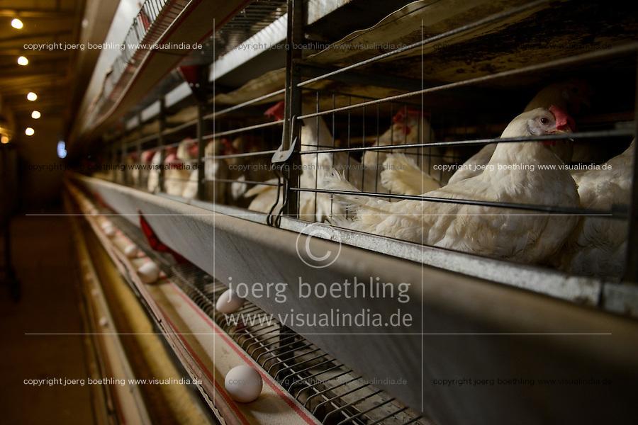 TURKEY Bandirma, hen farm for egg production which are supplied to Istanbul and Bursa, the chicken dung is used for the nearby Edincik biogas plant of company Telko where chicken dung is fermented to gas which is used for generation of electric power / TUERKEI Bandirma, Huehnerfarmen, Legebatterie fuer die Eierproduktion, taegliche Lieferung von 1,5 Mio Eiern nach Bursa und Istanbul, der Huehnermist wird neuerdings an die Edincik Biogasanlage der Firma Telko geliefert , hier wird Huehnermist  zu Biogas und Strom