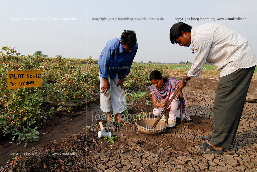 "Asien Suedasien Indien Madhya Pradesh , bioRe Projekt fuer biodynamischen Anbau von Baumwolle in Kasrawad  -  Landwirtschaft Biobaumwolle Baumwolle bio-dynamischer Anbau biologischer Bio Oekologie oekologischer xagndaz | <br /> South asia Inda Madhya Pradesh , organic cotton project bioRe in Kasrawad - agriculture organic farming rural development <br /> | [ copyright (c) Joerg Boethling / agenda , Veroeffentlichung nur gegen Honorar und Belegexemplar an / publication only with royalties and copy to:  agenda PG   Rothestr. 66   Germany D-22765 Hamburg   ph. ++49 40 391 907 14   e-mail: boethling@agenda-fototext.de   www.agenda-fototext.de   Bank: Hamburger Sparkasse  BLZ 200 505 50  Kto. 1281 120 178   IBAN: DE96 2005 0550 1281 1201 78   BIC: ""HASPDEHH"" ,  WEITERE MOTIVE ZU DIESEM THEMA SIND VORHANDEN!! MORE PICTURES ON THIS SUBJECT AVAILABLE!!  ] [#0,26,121#]"
