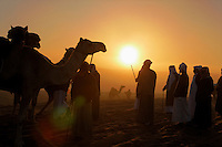 Sunrise brings early competitors to line up at the gates of the Camel Beauty Contest. Cars that will be prizes for winning camels line the parking area outside the camel contest.  Often the camel owners are so wealthy that they keep the plaque but give the car to the camel trainer.