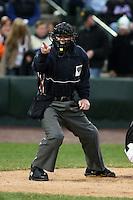 MiLB Umpires 2008