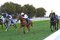 Winner of The Weatherbys TBA Conditions Stakes Apollo One  (pink) ridden by Martin Harley and trained by Peter Charalabous during Horse Racing at Salisbury Racecourse on 1st October 2020