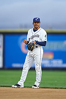 Tri-City Dust Devils second baseman Reinaldo Ilarraza (12) during a Northwest League game against the Vancouver Canadians at Gesa Stadium on August 21, 2019 in Pasco, Washington. Vancouver defeated Tri-City 1-0. (Zachary Lucy/Four Seam Images)